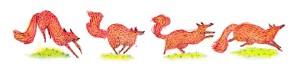 foxdance