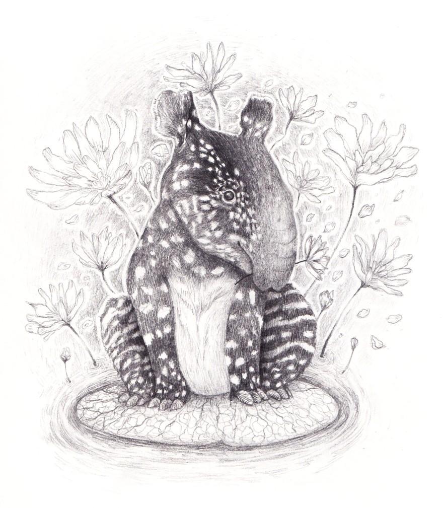 tapirfund