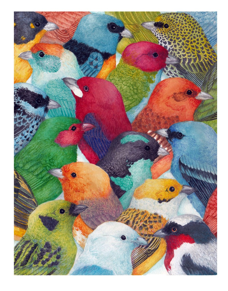 flockbetter.jpg